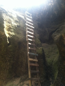 This ladder takes you into the cave.
